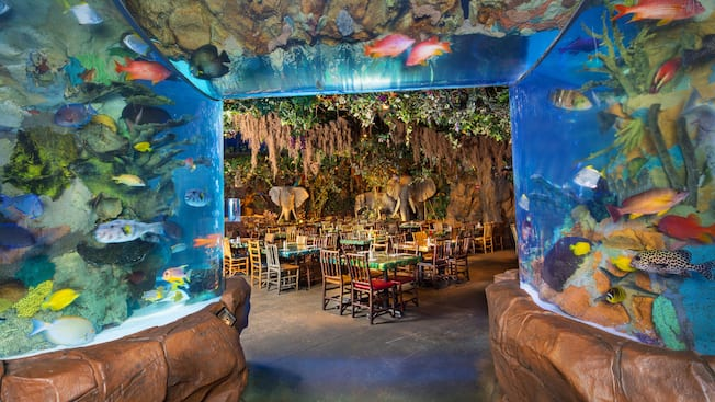 Rainforest Cafe Menu Disneyland