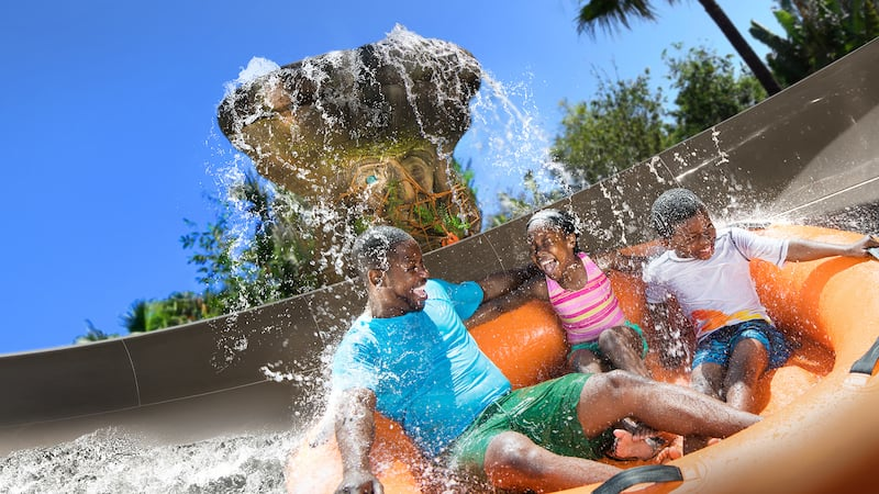 Disney's Typhoon Lagoon Water Park