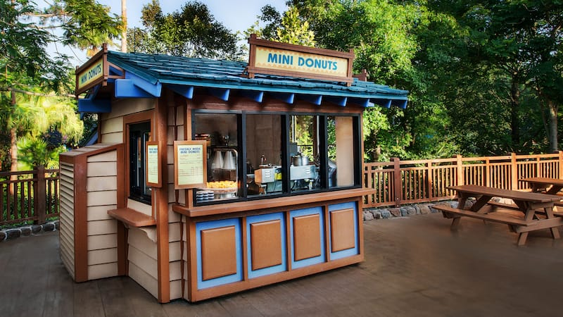 Mini Donuts at Disney