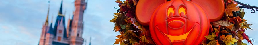 Cinderella Castle and a Mickey inspired Halloween leaf wreath attached to a lamppost