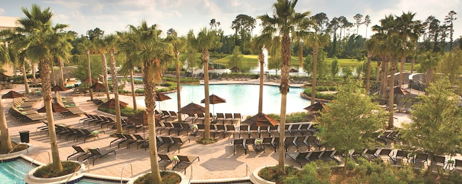 A large swimming pool area at a resort with deck chairs, umbrellas and many palm trees