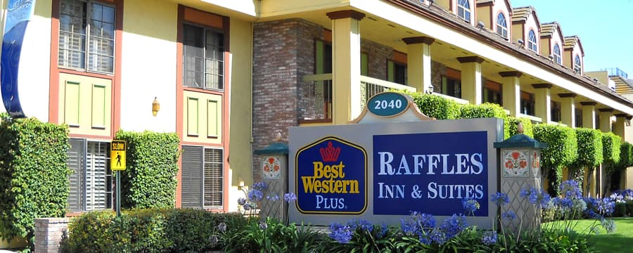 The Front Of Best Western Plus Raffles Inn Suites Accented With Hedges And Agapanthus Plants