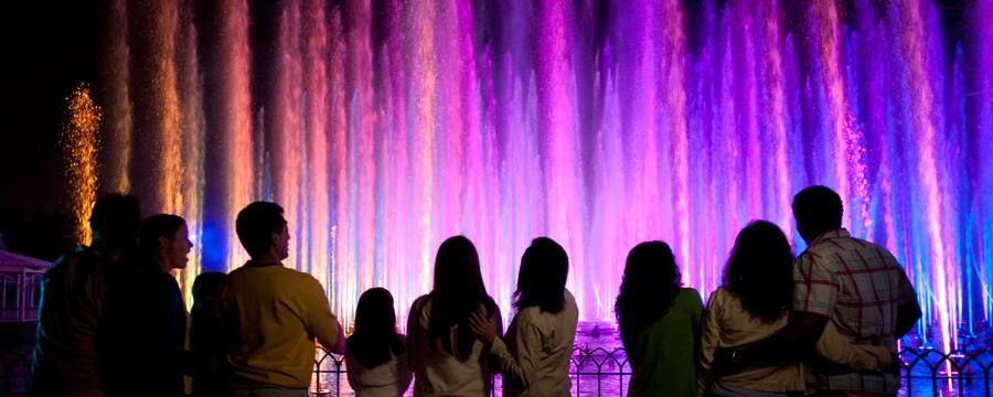 Guests stand in a preferred viewing area and watch the World of Color show