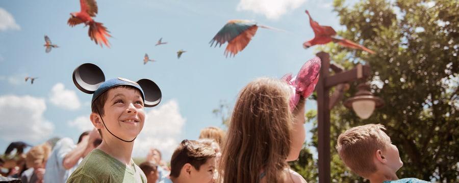 00-party-for-planet-flight-of-wonder-5x2Un niño con un gorro con orejas de Mickey, parado junto a otros Visitantes, observa una bandada de guacamayos volando sobre su cabeza