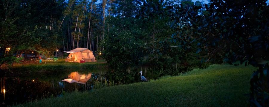 Acampamento no Disney's Fort Wilderness Resort, iluminado à noite